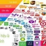 Màu sắc thương hiệu nào có thể tiết lộ về doanh nghiệp của bạn