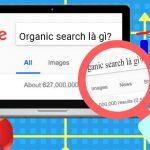 Vai trò của Organic Search là gì trong SEO