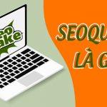 Seoquake là gì và cách sử dụng Seoquake hiệu quả nhất