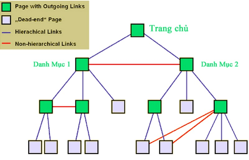 Internal Link là gì? Mẹo xây dựng Internal Link hiệu quả cho SEO